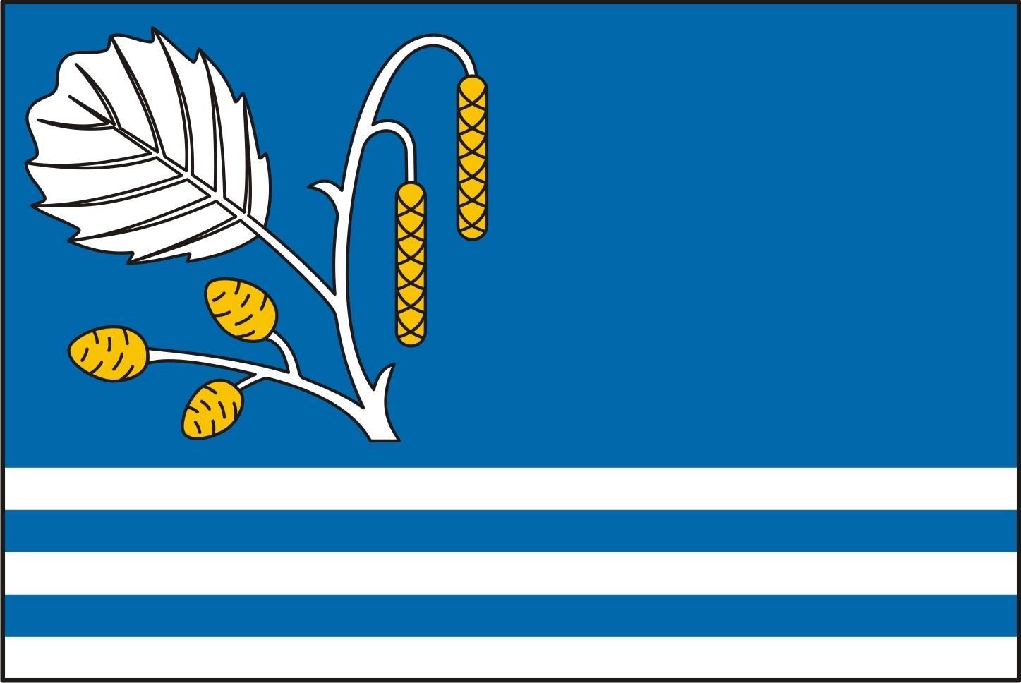 Vlajka obce Olešná