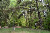 Hora Tábor (Burkovák), 5km jihovýchodně od Olešné,Keltské kultovní místo a pohřebiště starší doby bronzové a Halštatské.V novodobější historii poutní místo, 22.července 1419 se zde sešlo shromáždění 4